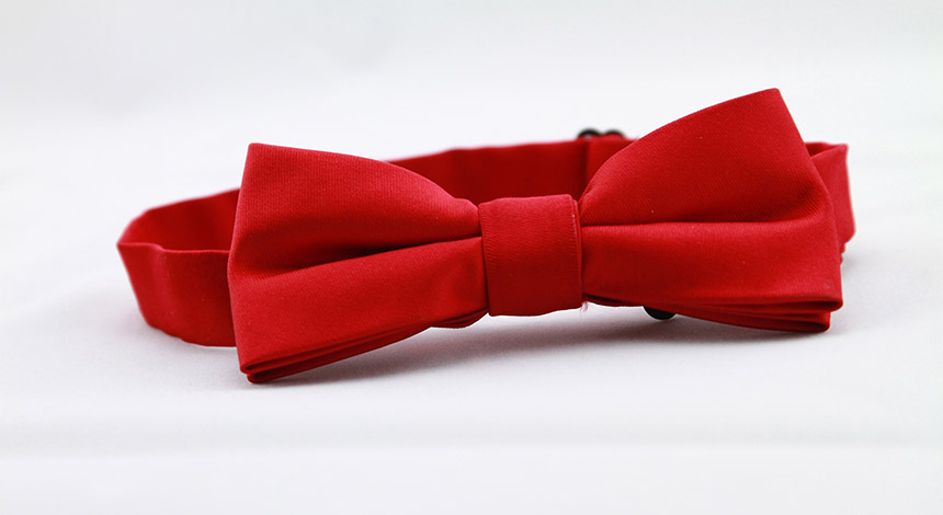 Prom bow tie_936466